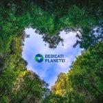 Începând din acest an, compania noastră se alătură inițiativei Planet Passionate – Dedicați Planetei – lansată de către Grupul Kingspan.